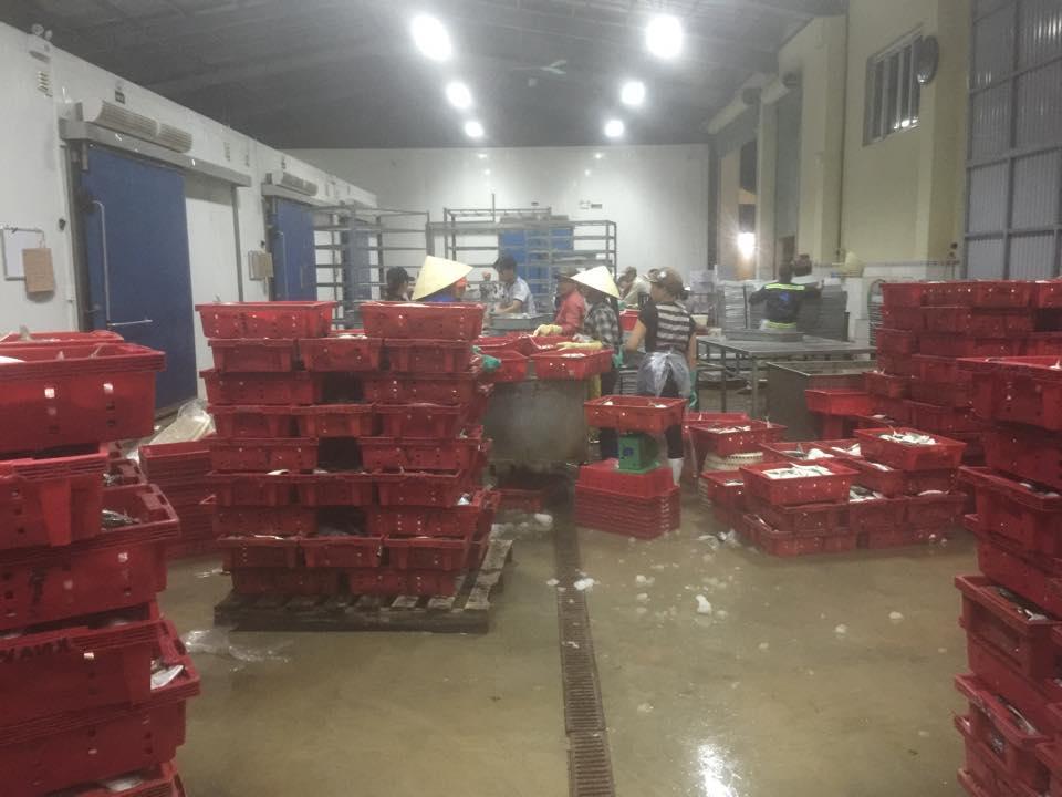 Xưởng chế biến hải sản