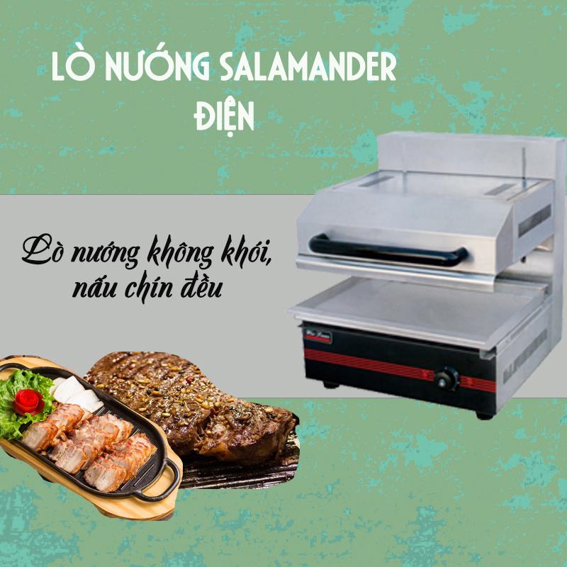 lò nướng Salamander điện 1