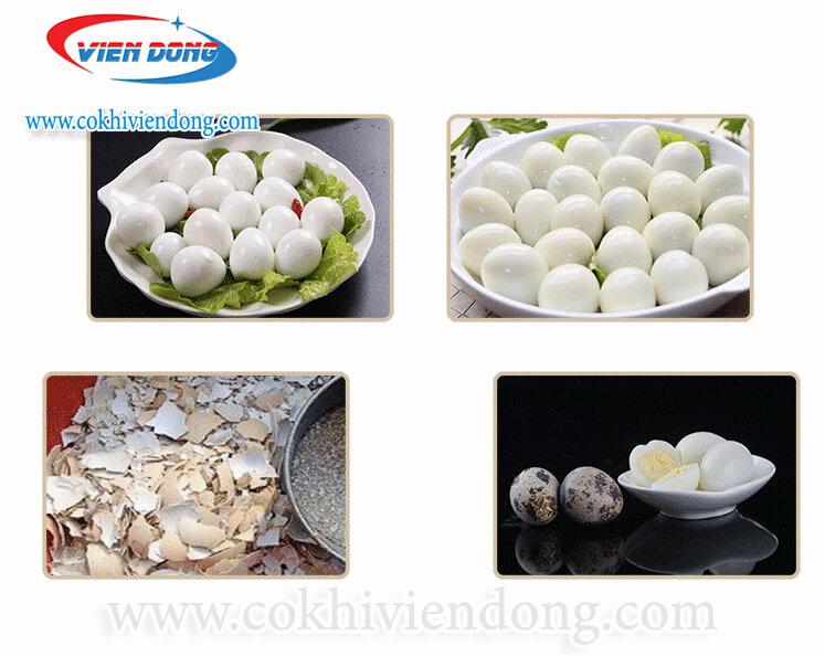 Máy lột trứng cút CT - BK